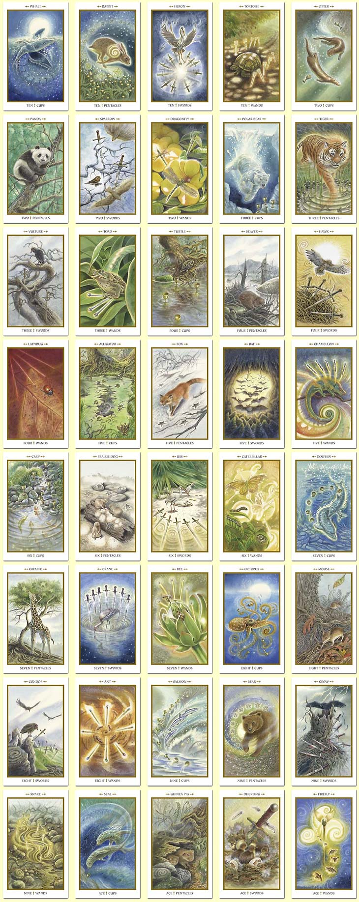Animals Divine Tarot: Minor Arcana Gallery